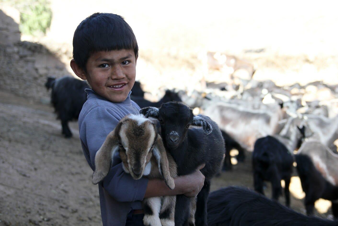 Jeune garçon de Caltapi en Bolivie